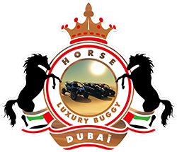 Horse Luxury Buggy Dubai