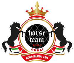 Horse Team M.M.A Dubai